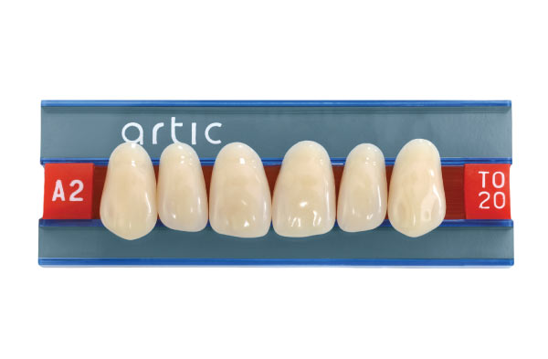 Artic Basic Denture Teeth