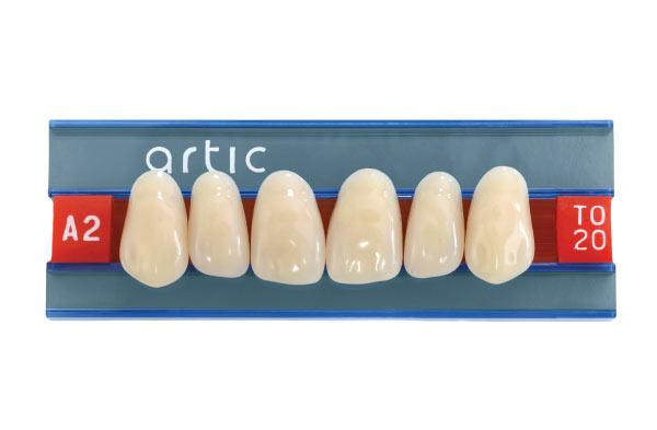 Basic Teeth